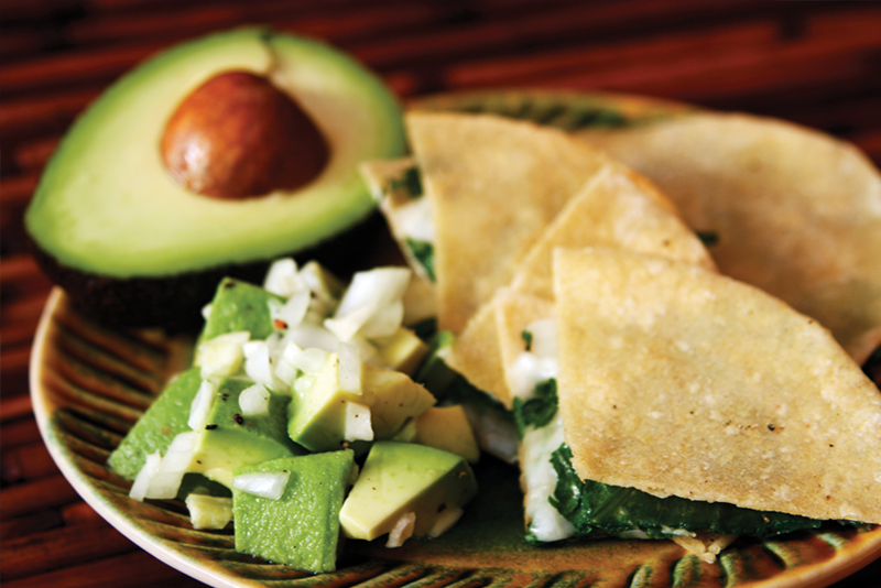 avocado and cilantro quesadillas